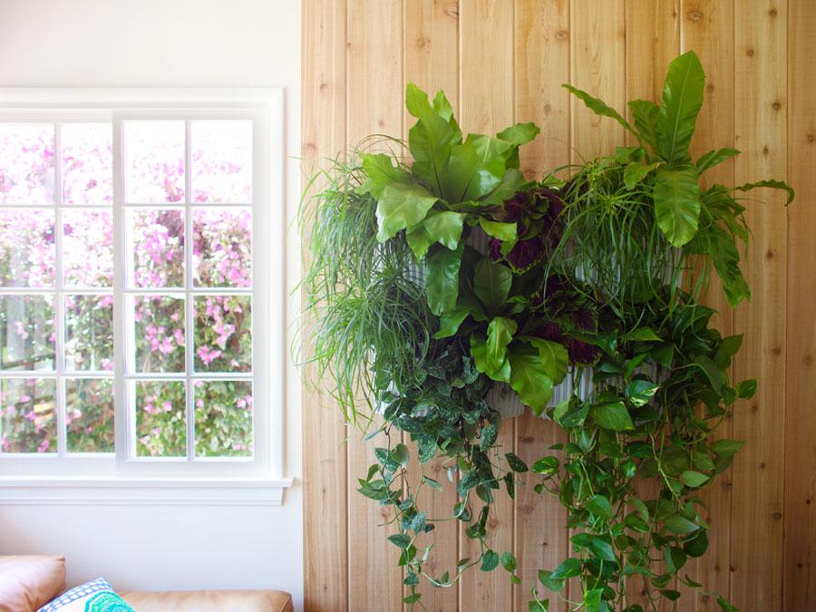 lwp-indoor-livingwall