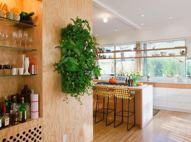 plantas-para-decorar-cozinhas-01