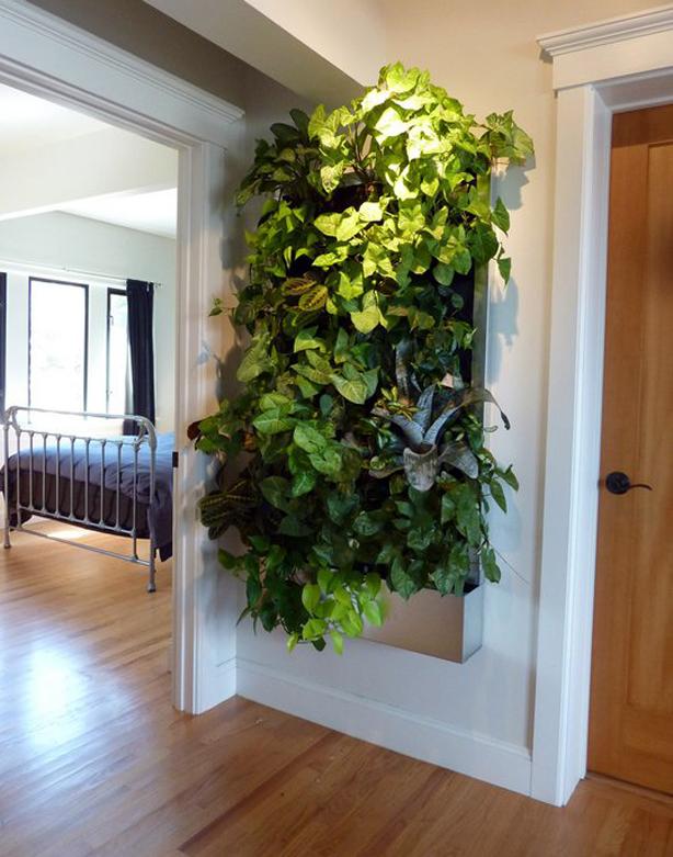 plants-on-walls-planted-floraframe